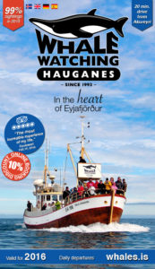 Whale watching brochure information download