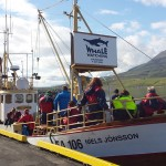 Our Whale watching boat